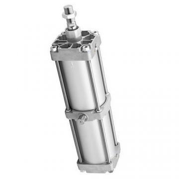 Bosch 0 822 222 005 Ø 50 H 125 822222005 Vérin Pneumatique Cylindre Compact