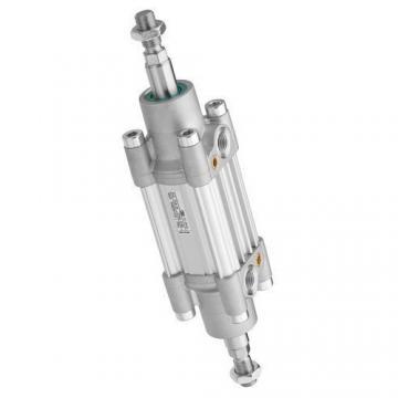 Vérins Pneumatiques Bosch Rexroth Tecknik à partir de 1680325000 (286-113 01 6 2