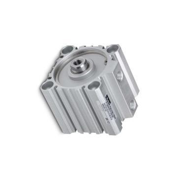PARKER Pneumatique Cylindre profilé P1E-T050MS-0200 double effet