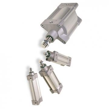 PARKER double action Pneumatique Cylindre profilé 32 mm Diamètre, 25 mm Stroke 9060931