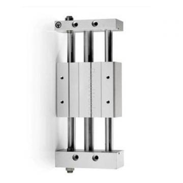 PARKER Pneumatique Cylindre profilé P1E-S040MS-0200 double effet