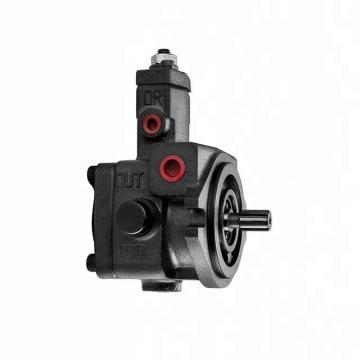 Pompe Hydraulique 43016-147 25678 PA230PCRBBBX